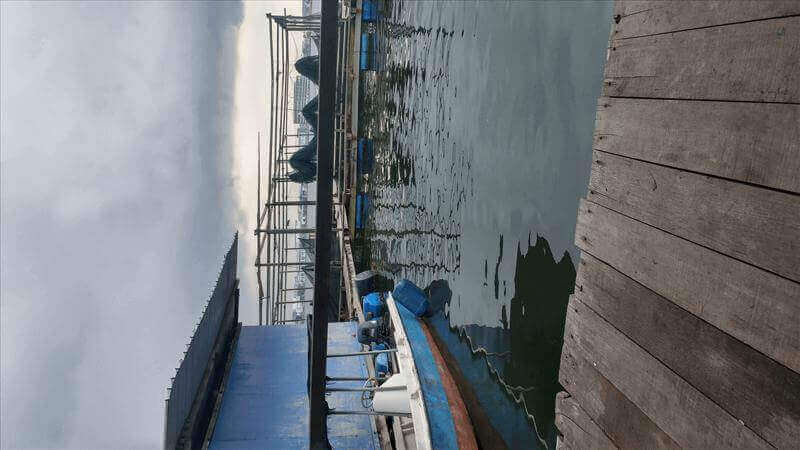 Fish Farm In Ubin For Sale With Experience Worker.