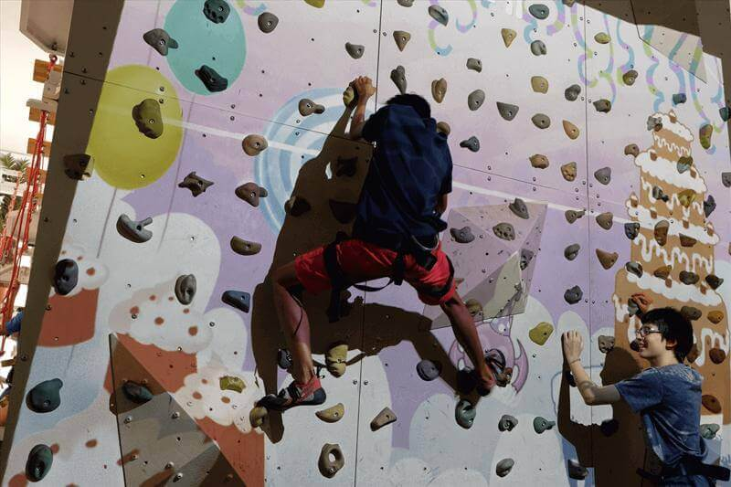 Very Rare - Indoor Obstacles & Climbing Arena For Sale
