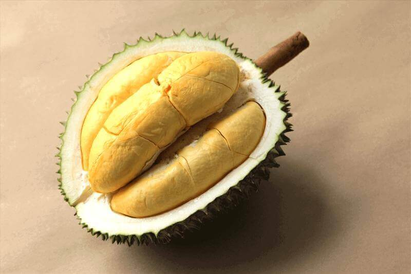 Very Profitable Durian Business ($7000-$10,000 Per Month)