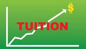 A Potential Newly Setup Online Tuition Agency Business Looking For Investor
