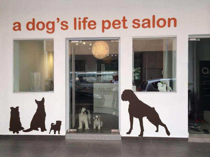 Urgent Takeover: Hip And Trendy Pet Salon With Strong Regular Customer Base