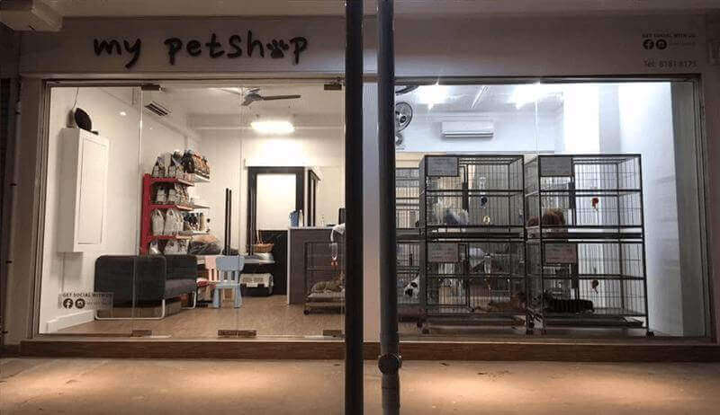 Profitable Pet Shop For Sale With Farm Support