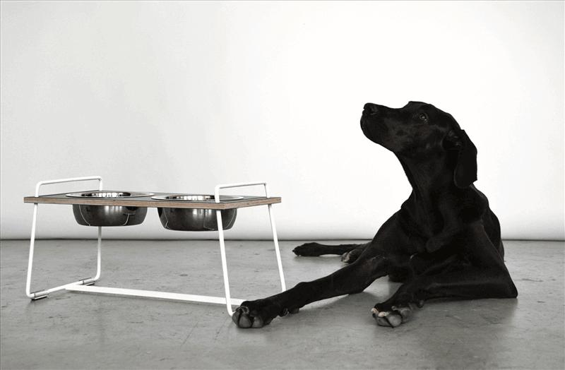Pet Accessories Wholesale Stock For Sale
