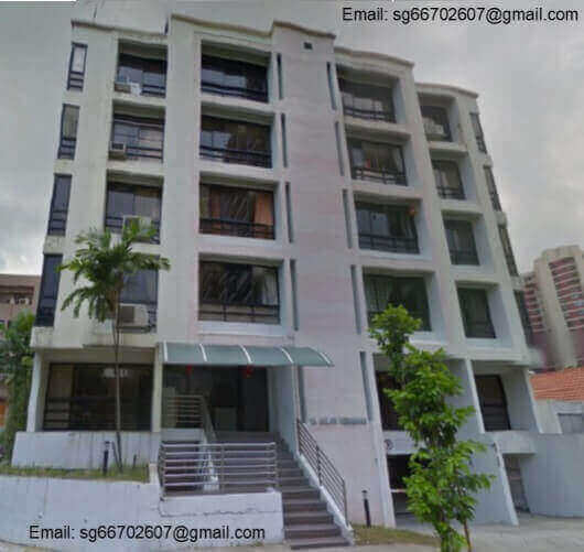 Freehold Property At Balestier Road For Sale (Prime Location)