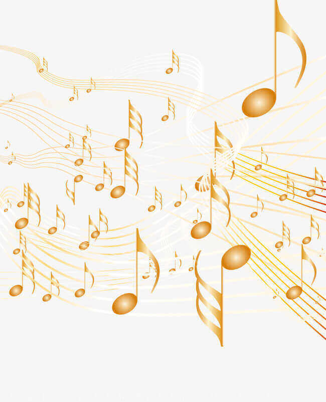 Educations: Musical Instruments Wholesaler Centre/Studio For Take Over