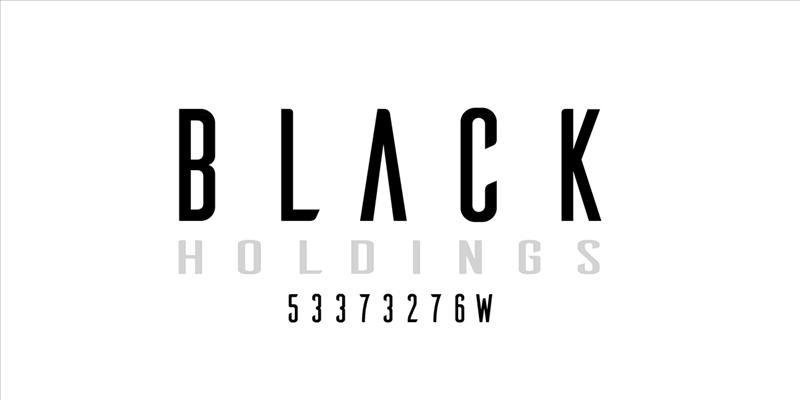 BLACK HOLDINGS looking for Angel Investors/Partners