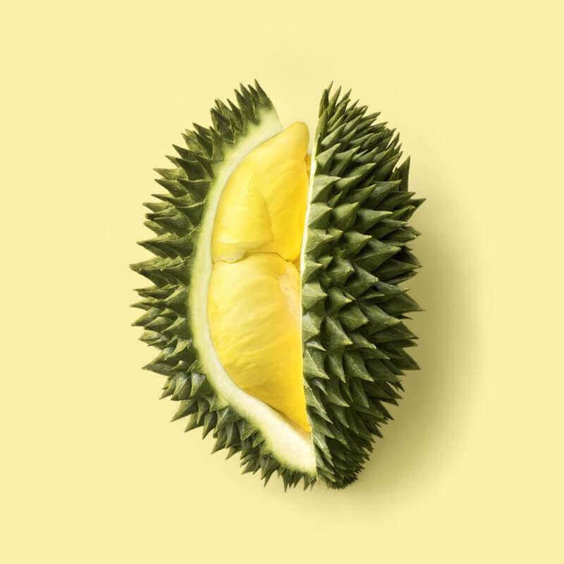 Start Your Own Profitable Durian Business