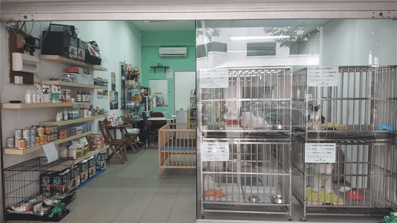 Pet Shop For Easy Takeover