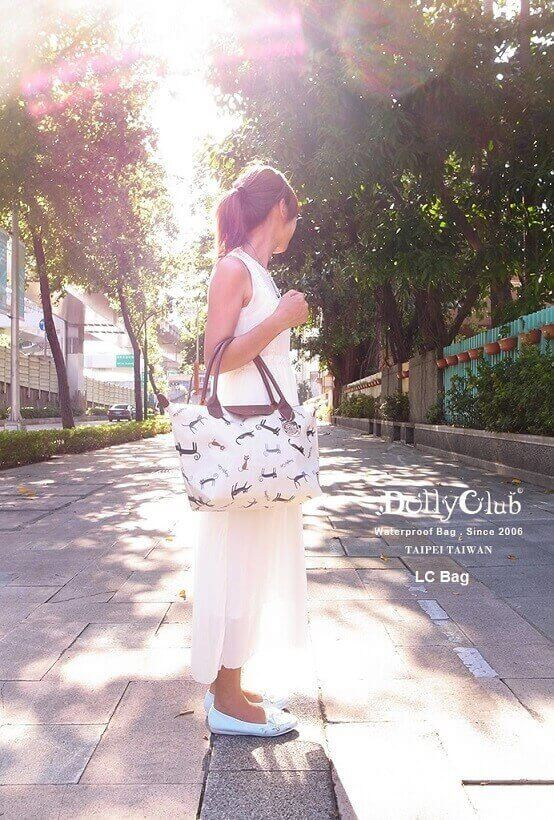 Online Trendy Taiwanese Bags Store For Sale (Ecommerce Website + Qoo10 + Stock)