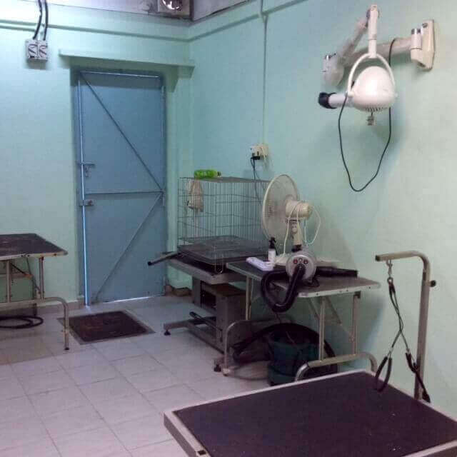 Pet Retail Supplies And Grooming Business For Sale