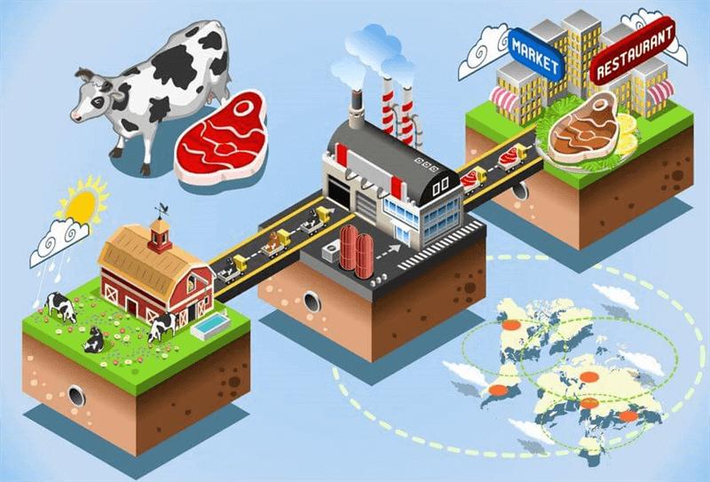 Food Manufacturing, Healthy Food