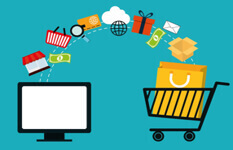 Ecommerce Business With 30K Revenue Per Month For Sale