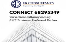 Ek Consultancy - Financial / Insurance Industry Related Clients Base And Data For Take Over.